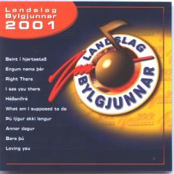 Landslag Bylgjunnar 2001 - Ýmsir