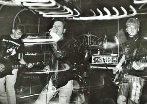 Dýrið gengur laust 1989